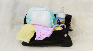 Diaper Bag for Twins